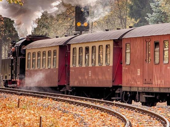 Harzquerbahn V Německu existují také velmi speciální trasy: Harzquerbahn. Parní lokomotivy cestují kolem 60 kilometrů mezi Nordhausenem a Wernigerode maximálně 40 kilometry za hodinu.