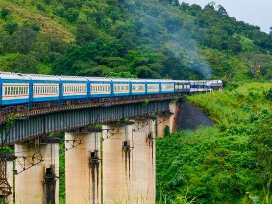 Tanzanie Zambie železnice Jak název napovídá, železnice Tanzanie-Zambie vede z Dar es Salaamu v Tanzanii do Kapiri Mposhi v Zambii. 100 kilometrů trasy vede přes Selous Game Reserve - je tedy vysoká pravděpodobnost, že z vlaku uvidíte slony nebo hrochy.
